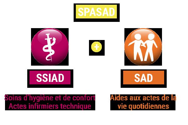 graphique montrant la fusion entre le service sad et service ssiad